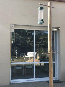 nichoir vision fenêtre et mangeoire